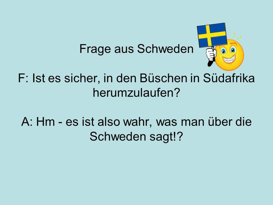 Frage aus Schweden F: Ist es sicher, in den Büschen in Südafrika herumzulaufen.