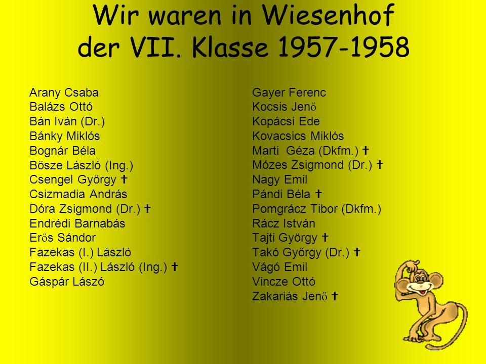 Wir waren in Wiesenhof der VII. Klasse 1957-1958