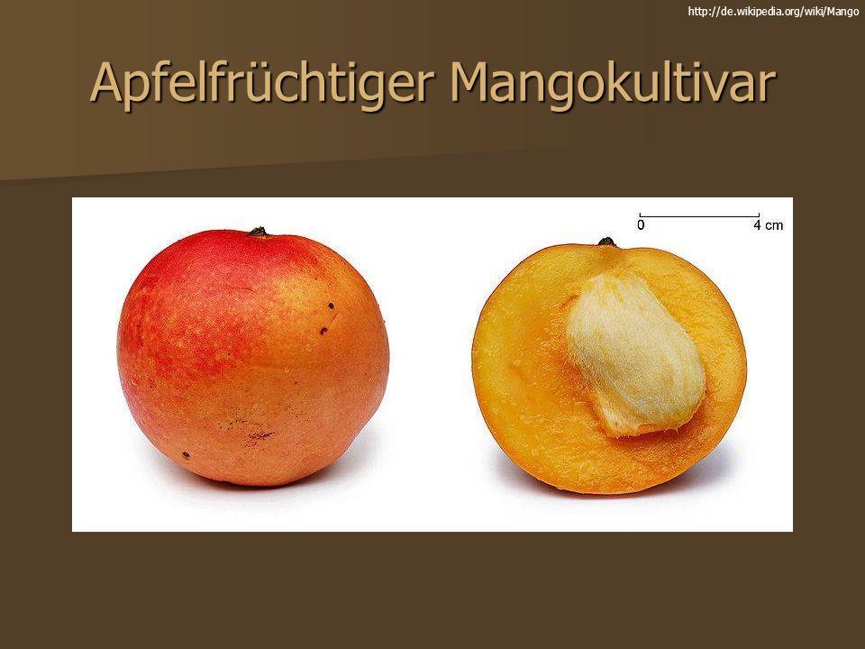 Apfelfrüchtiger Mangokultivar
