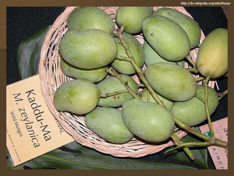 http://de.wikipedia.org/wiki/Mango