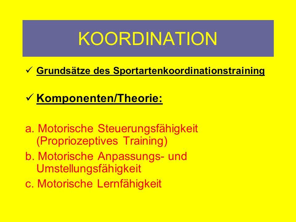 KOORDINATION Komponenten/Theorie: