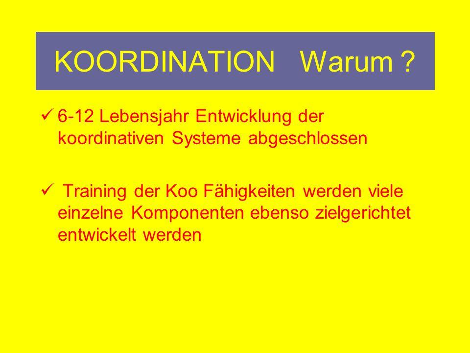 KOORDINATION Warum 6-12 Lebensjahr Entwicklung der koordinativen Systeme abgeschlossen.