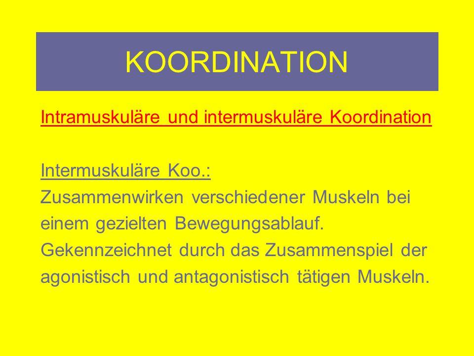KOORDINATION Intramuskuläre und intermuskuläre Koordination