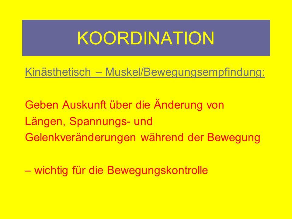 KOORDINATION Kinästhetisch – Muskel/Bewegungsempfindung: