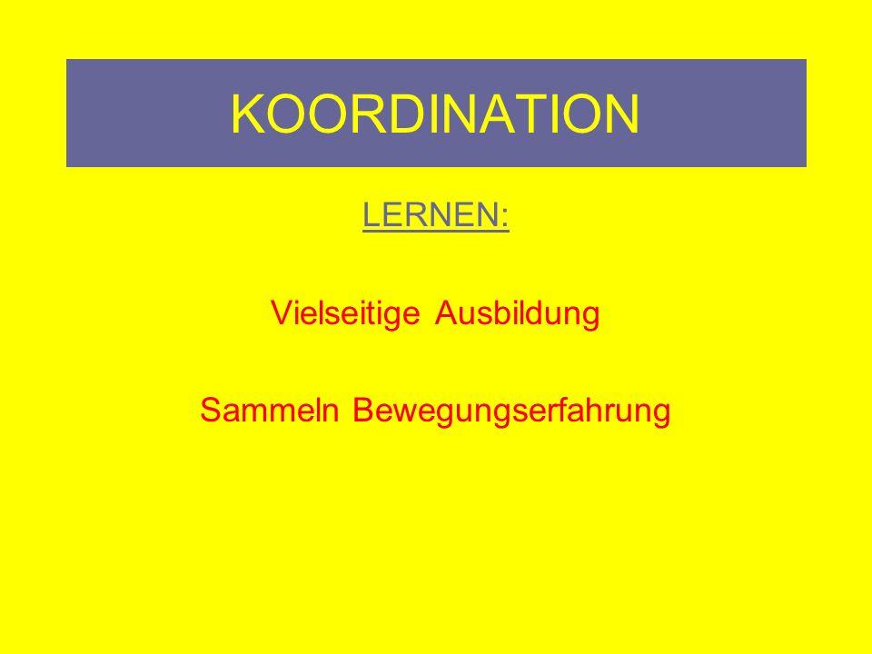 KOORDINATION LERNEN: Vielseitige Ausbildung Sammeln Bewegungserfahrung