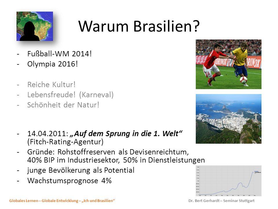 Warum Brasilien Fußball-WM 2014! Olympia 2016! Reiche Kultur!