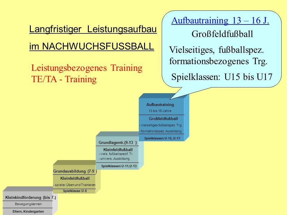Langfristiger Leistungsaufbau im NACHWUCHSFUSSBALL Großfeldfußball