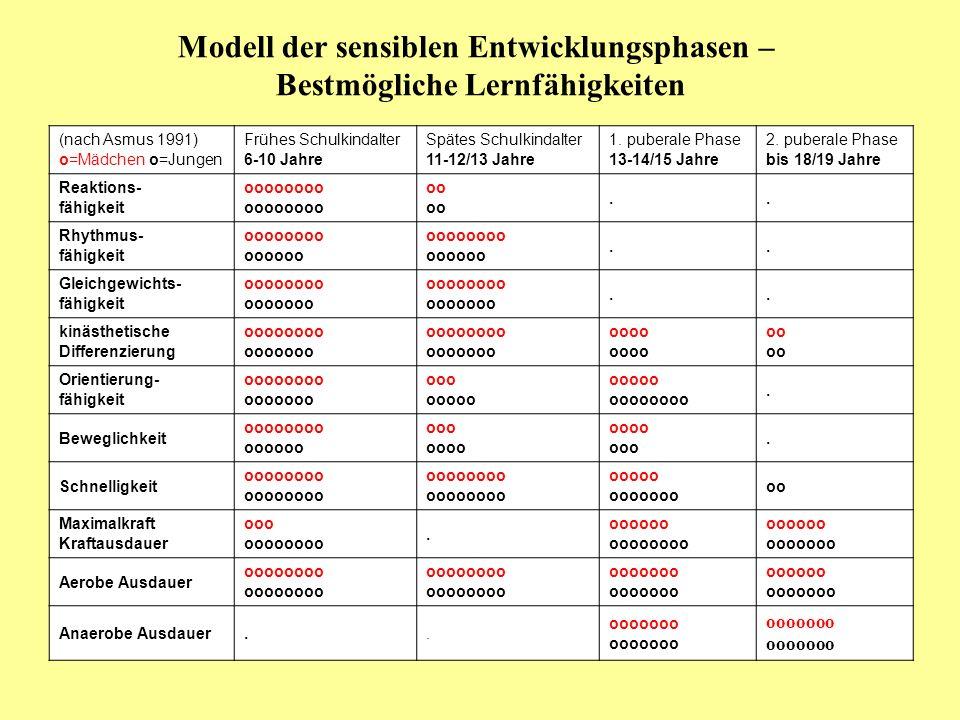 Modell der sensiblen Entwicklungsphasen – Bestmögliche Lernfähigkeiten