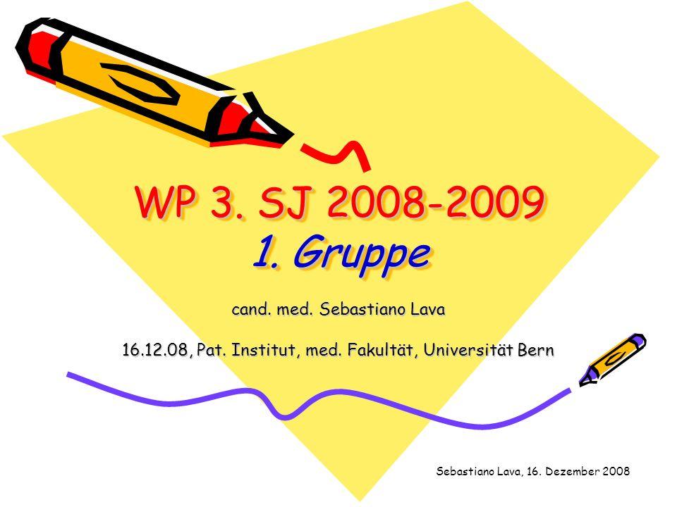 WP 3. SJ 2008-2009 1. Gruppe cand. med. Sebastiano Lava