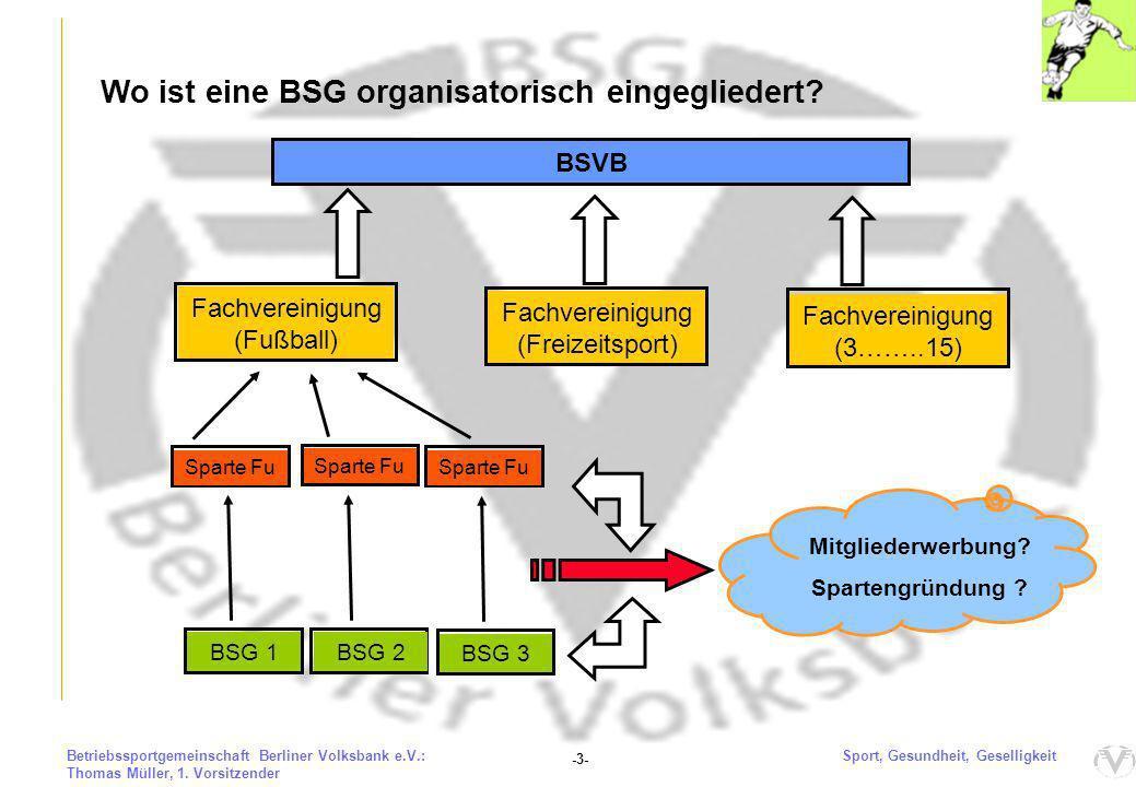 Die Berliner Volksbank eG und die BSG e.V.