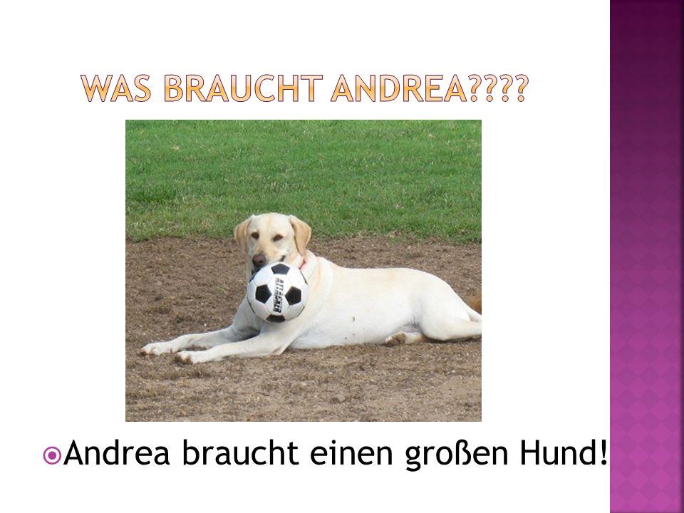 Was braucht Andrea Andrea braucht einen großen Hund!