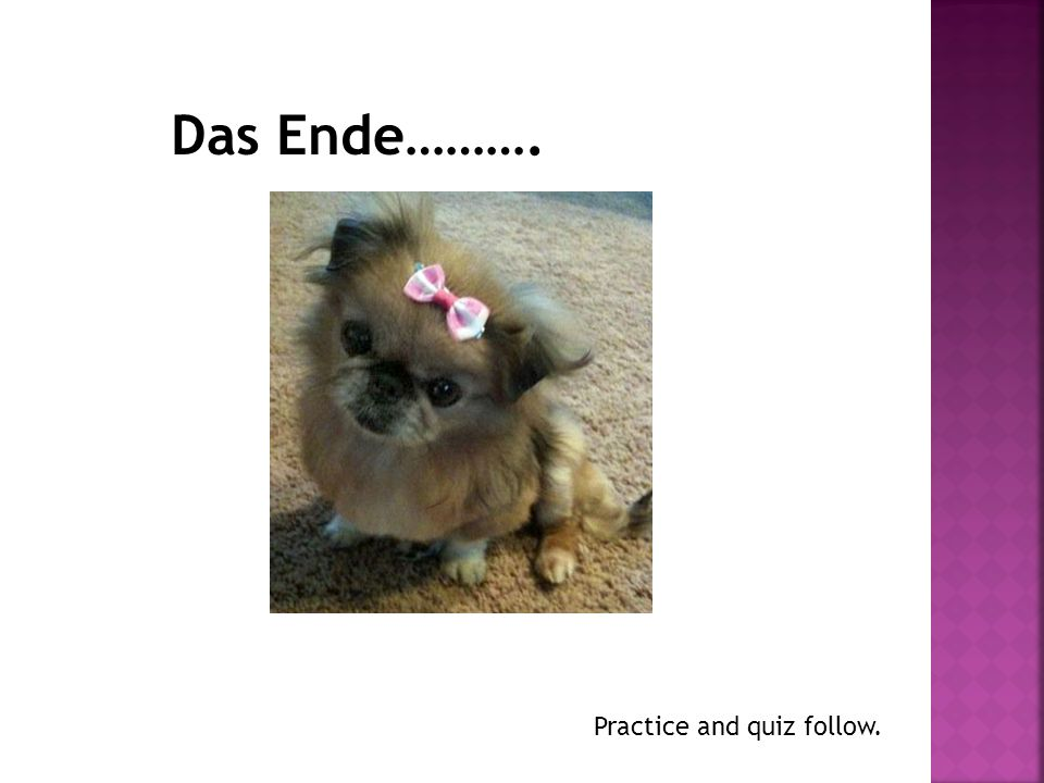 Das Ende………. Practice and quiz follow.