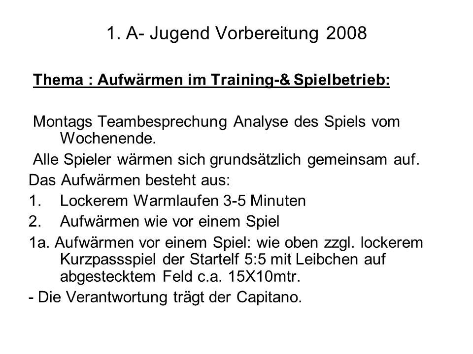 1. A- Jugend Vorbereitung 2008