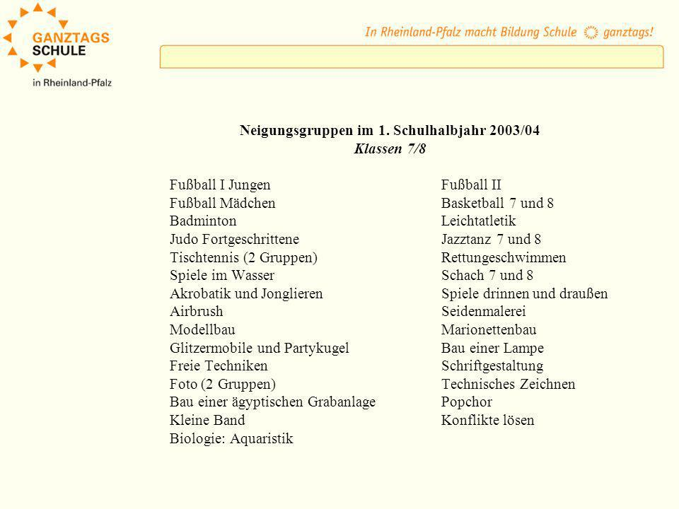 Neigungsgruppen im 1. Schulhalbjahr 2003/04