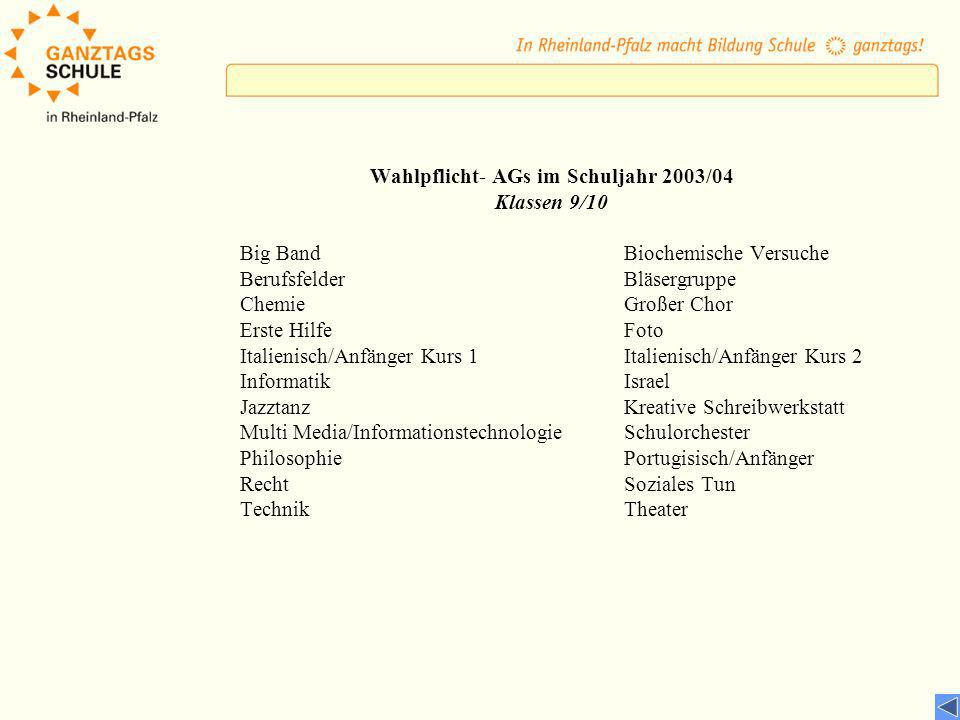 Wahlpflicht- AGs im Schuljahr 2003/04