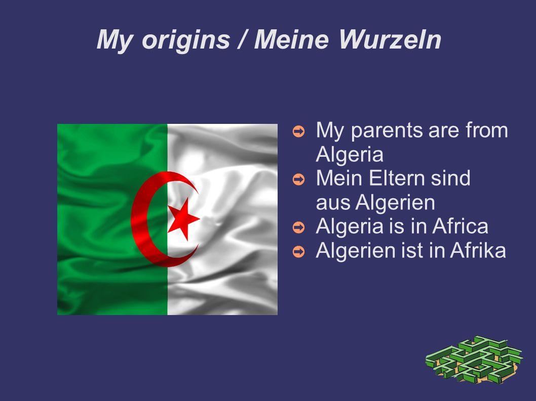 My origins / Meine Wurzeln