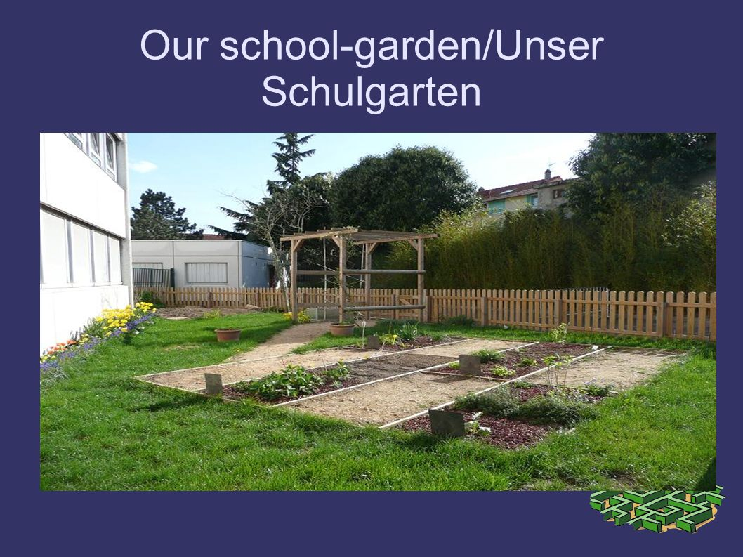 Our school-garden/Unser Schulgarten