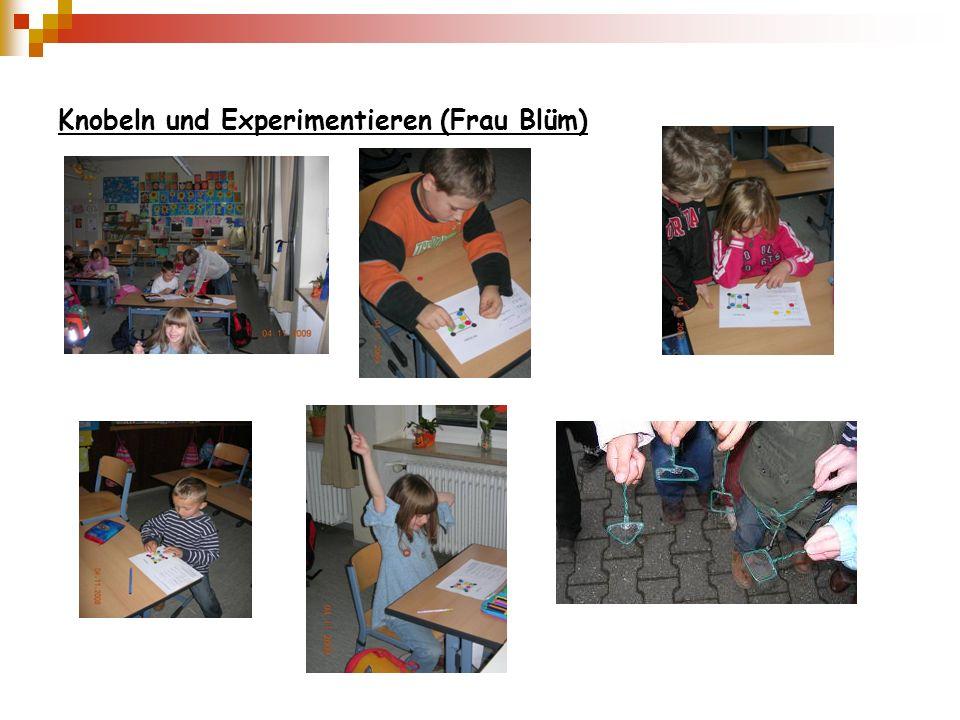 Knobeln und Experimentieren (Frau Blüm)