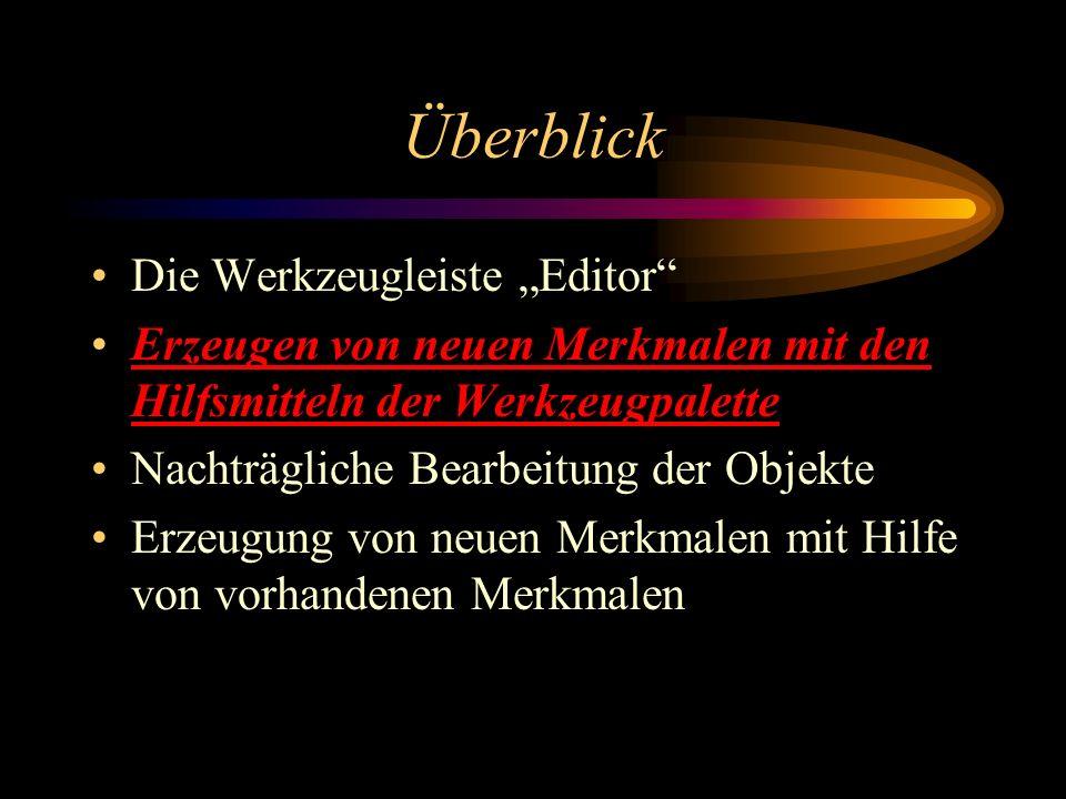"""Überblick Die Werkzeugleiste """"Editor"""