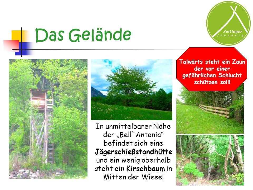 Das Gelände Talwärts steht ein Zaun der vor einer gefährlichen Schlucht schützen soll!