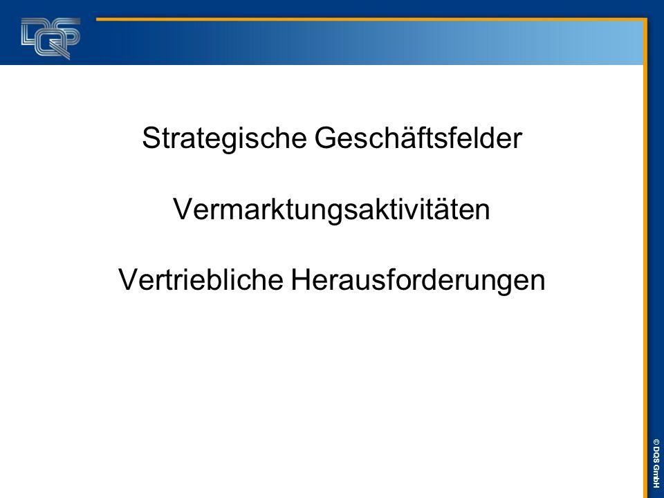 Strategische Geschäftsfelder Vermarktungsaktivitäten Vertriebliche Herausforderungen