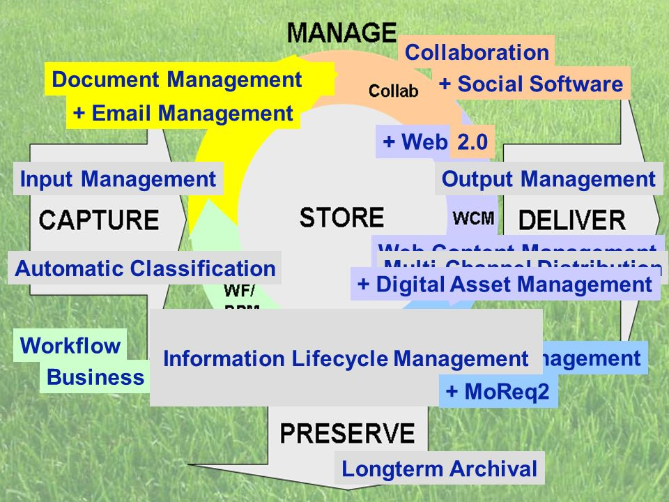 Web Content Management Automatic Classification