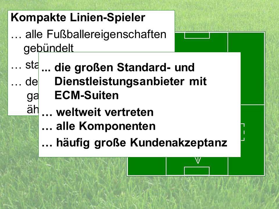 Kompakte Linien-Spieler … alle Fußballereigenschaften gebündelt