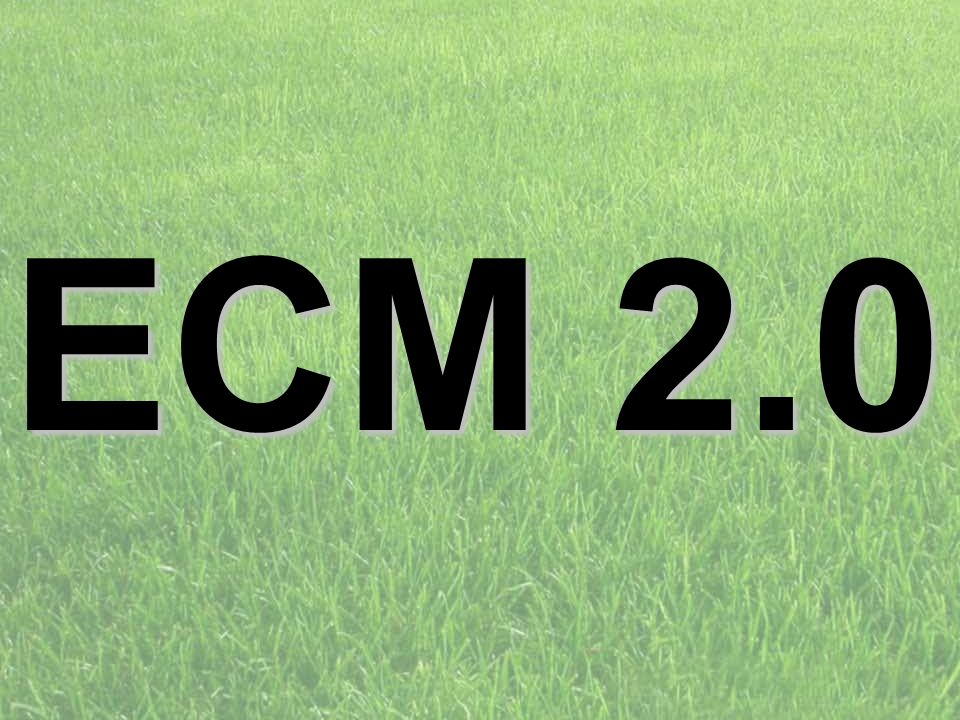 ECM 2.0 PROJECT CONSULT Unternehmensberatung d.forum Trainerbriefing: