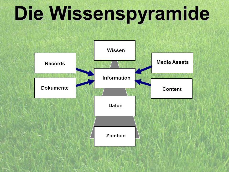 Die Wissenspyramide Wissen Media Assets Records Information Dokumente