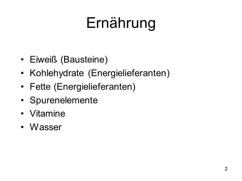 Ernährung Eiweiß (Bausteine) Kohlehydrate (Energielieferanten)