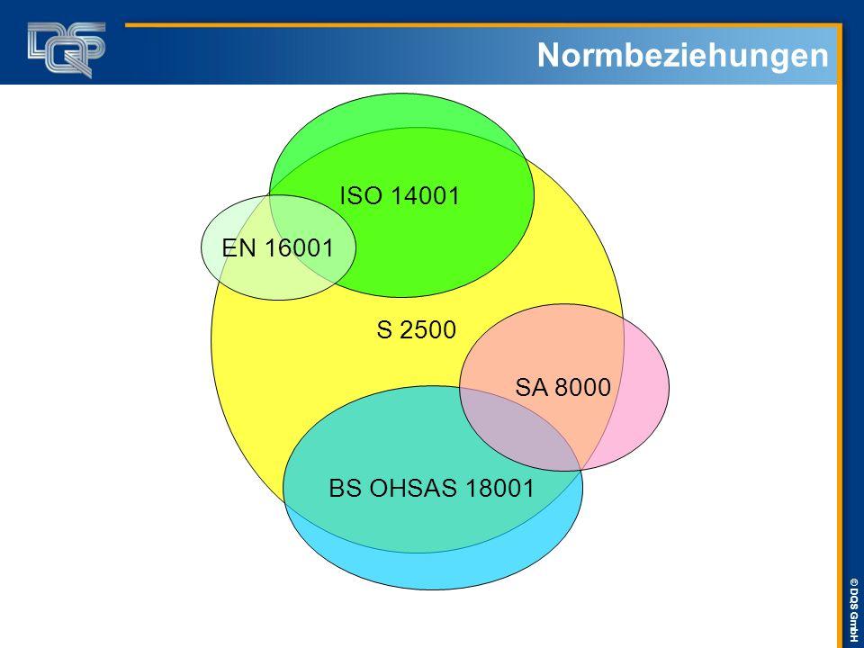 Normbeziehungen ISO 14001 S 2500 EN 16001 SA 8000 BS OHSAS 18001