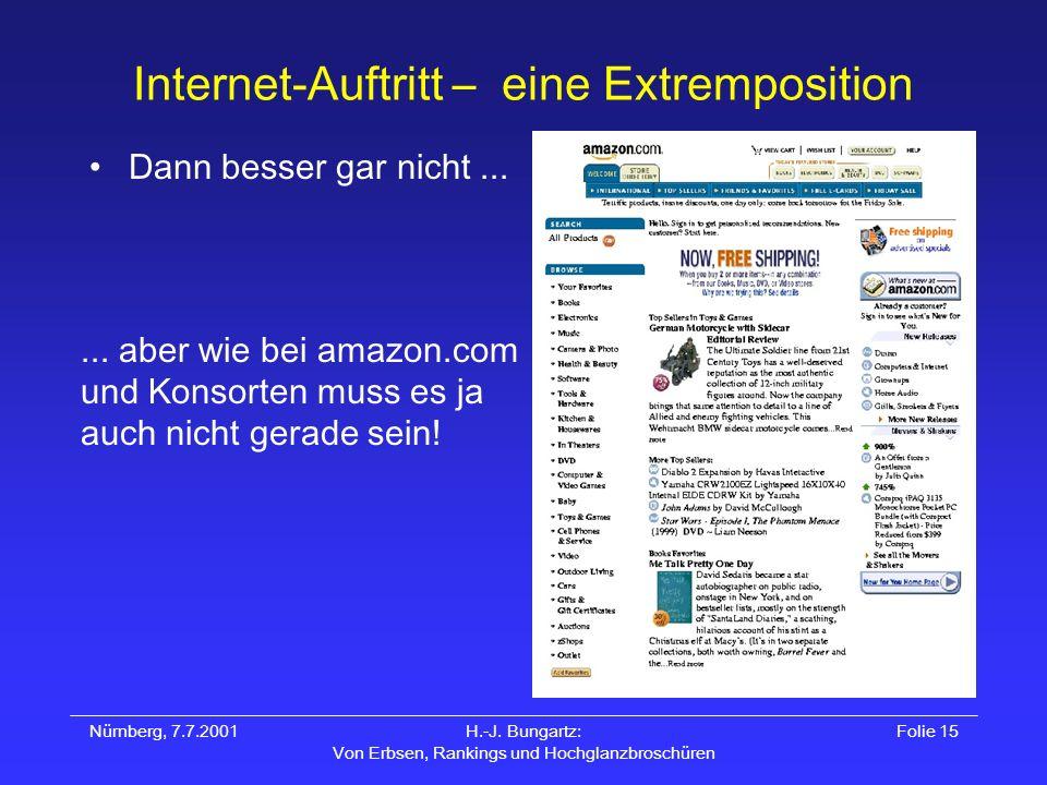 Internet-Auftritt – eine Extremposition