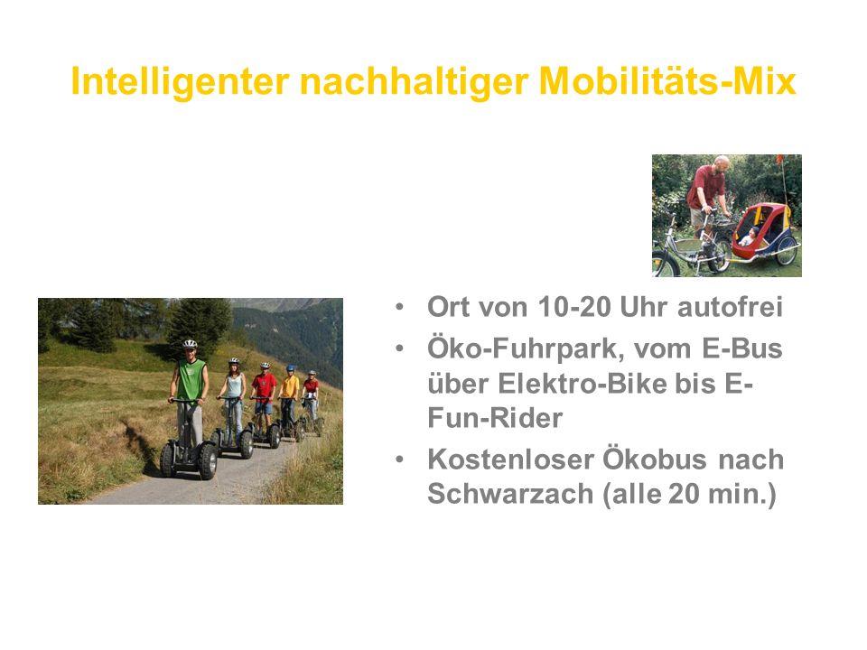 Intelligenter nachhaltiger Mobilitäts-Mix