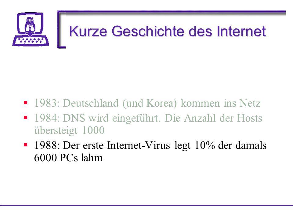 Kurze Geschichte des Internet