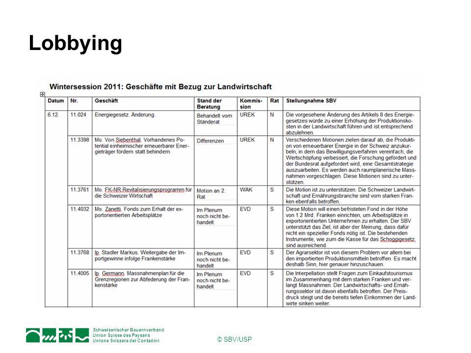 Lobbying © SBV/USP