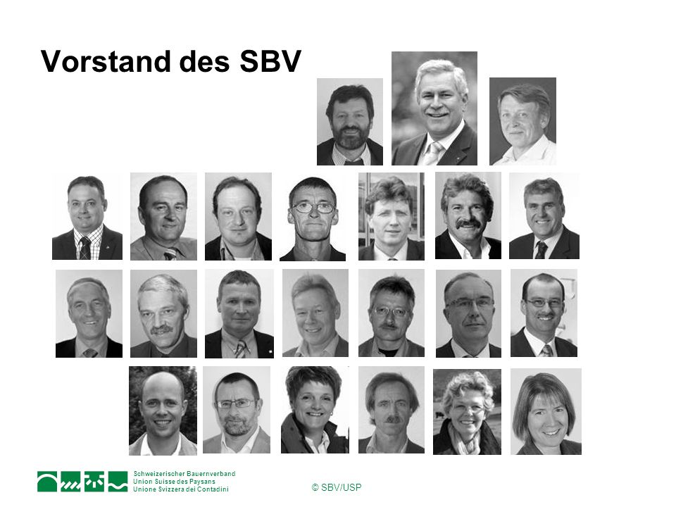 Vorstand des SBV © SBV/USP