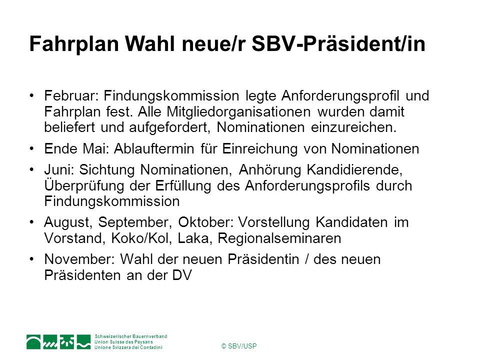 Fahrplan Wahl neue/r SBV-Präsident/in
