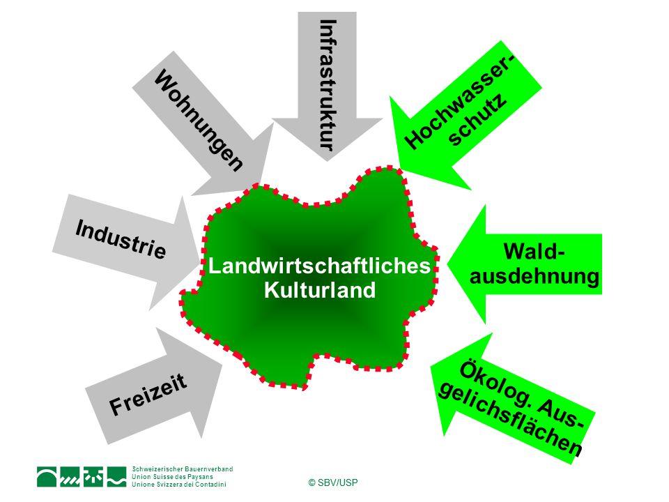 Landwirtschaftliches Kulturland Ökolog. Aus- gelichsflächen