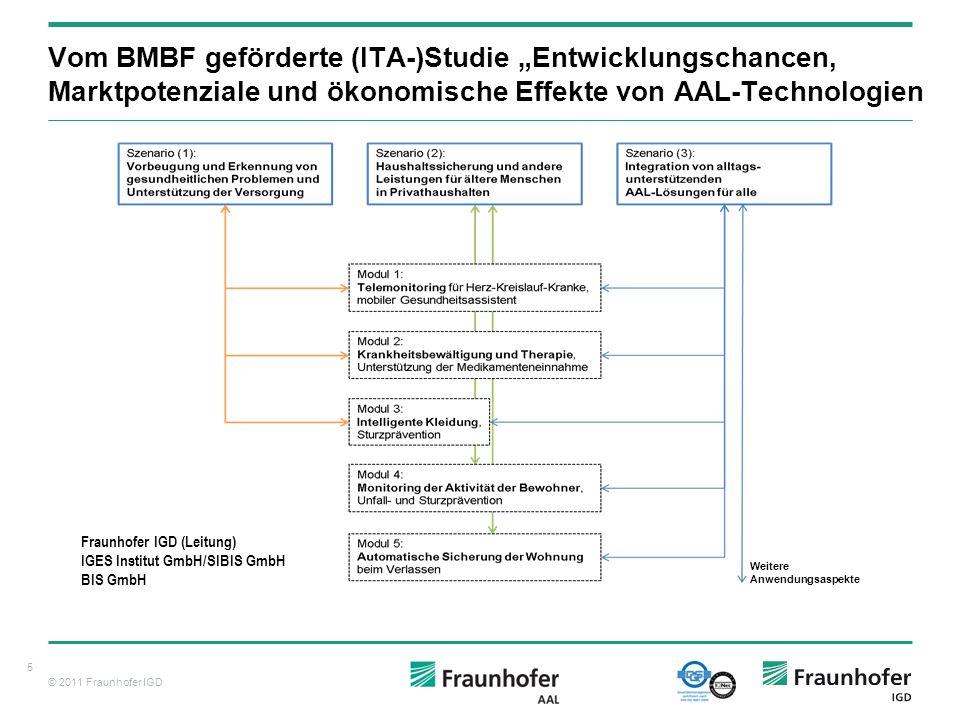 """Vom BMBF geförderte (ITA-)Studie """"Entwicklungschancen, Marktpotenziale und ökonomische Effekte von AAL-Technologien"""