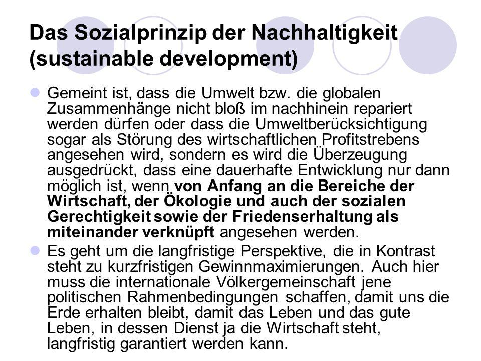 Das Sozialprinzip der Nachhaltigkeit (sustainable development)