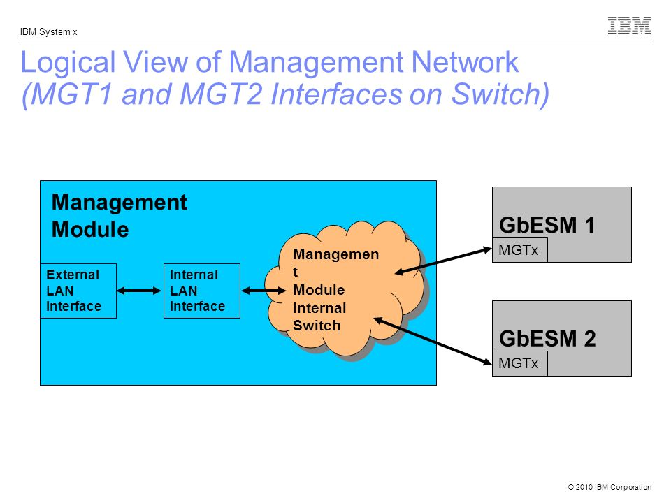 Logical View of Management Network (MGT1 and MGT2 Interfaces on Switch)