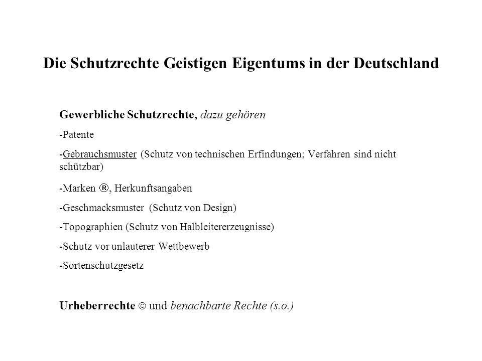 Die Schutzrechte Geistigen Eigentums in der Deutschland