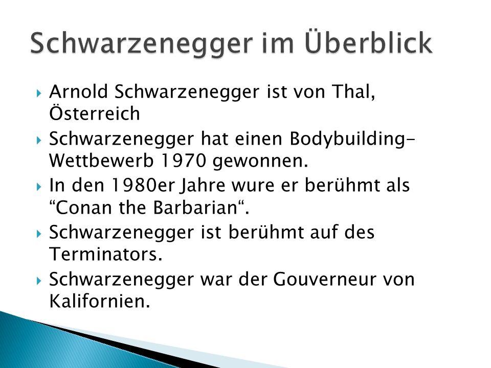 Schwarzenegger im Überblick