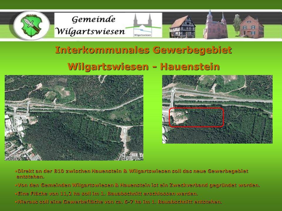 Interkommunales Gewerbegebiet Wilgartswiesen - Hauenstein