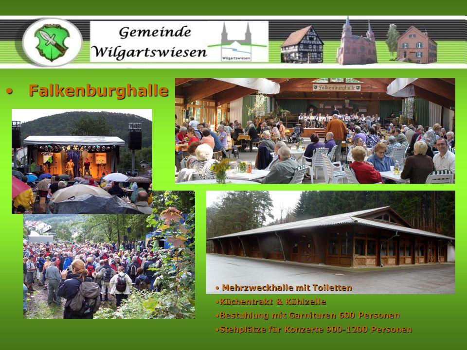 Falkenburghalle Mehrzweckhalle mit Toiletten Küchentrakt & Kühlzelle