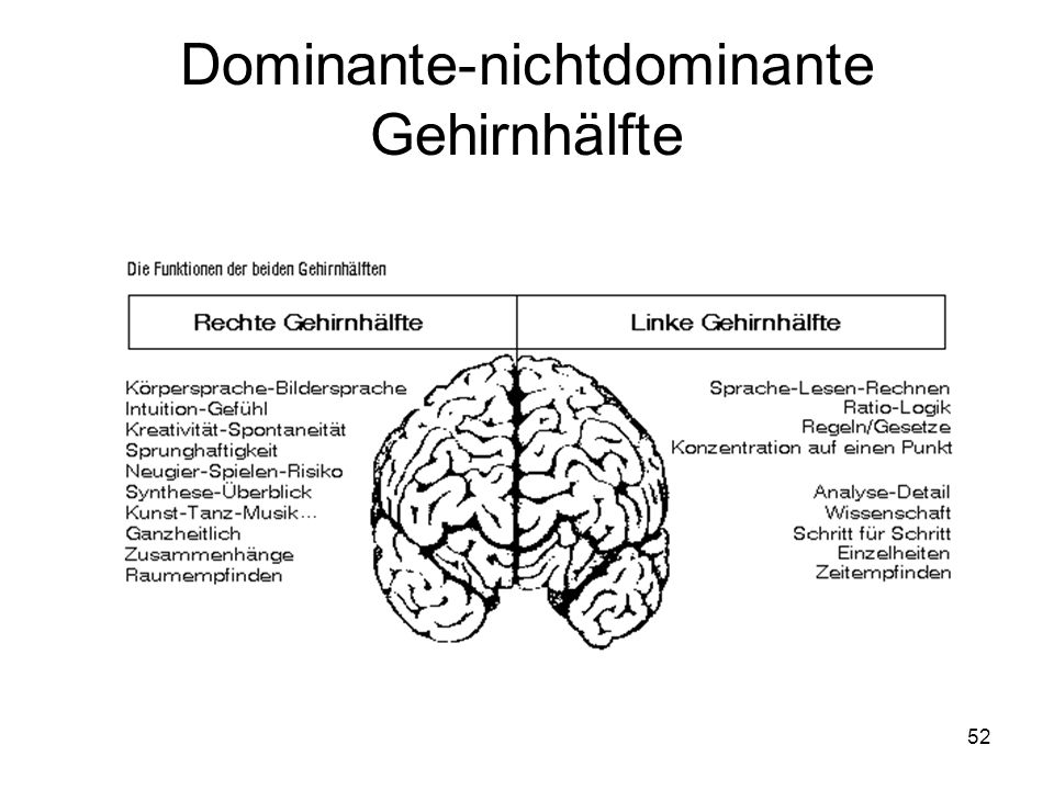 Dominante-nichtdominante Gehirnhälfte
