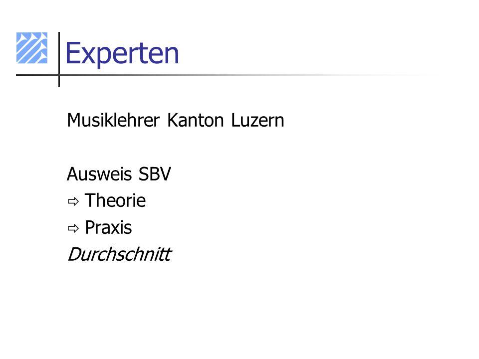 Experten Musiklehrer Kanton Luzern Ausweis SBV Theorie Praxis