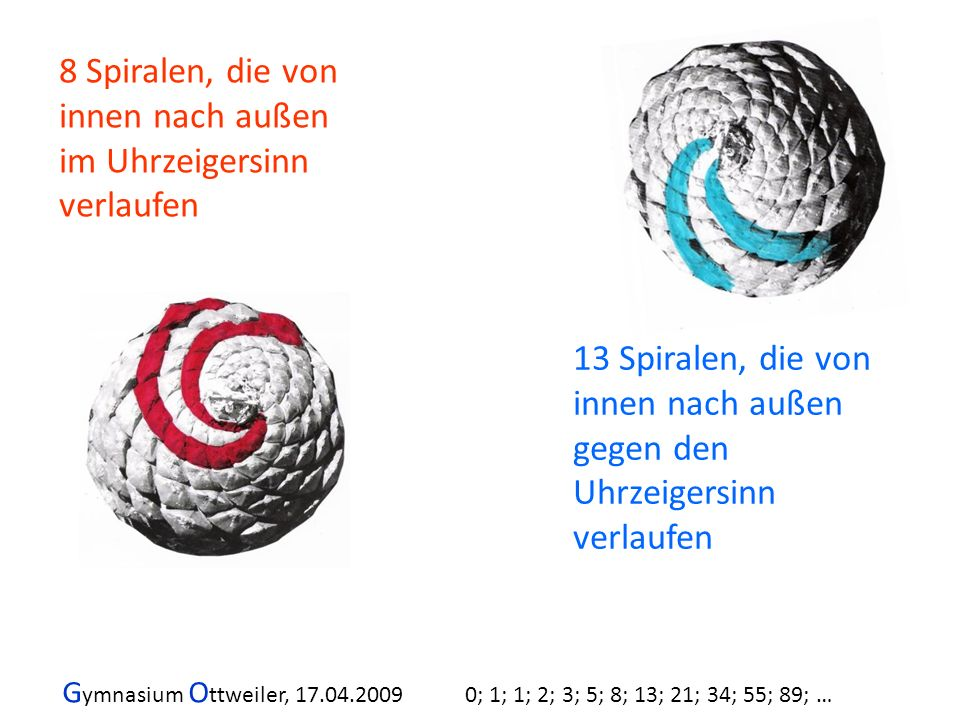 8 Spiralen, die von innen nach außen im Uhrzeigersinn verlaufen