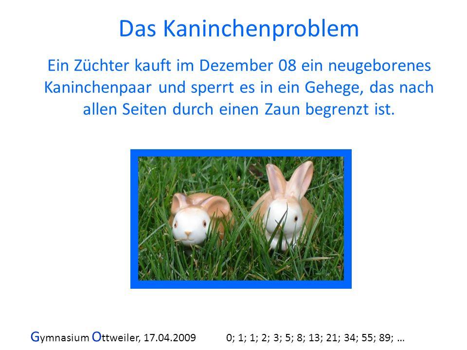Das Kaninchenproblem