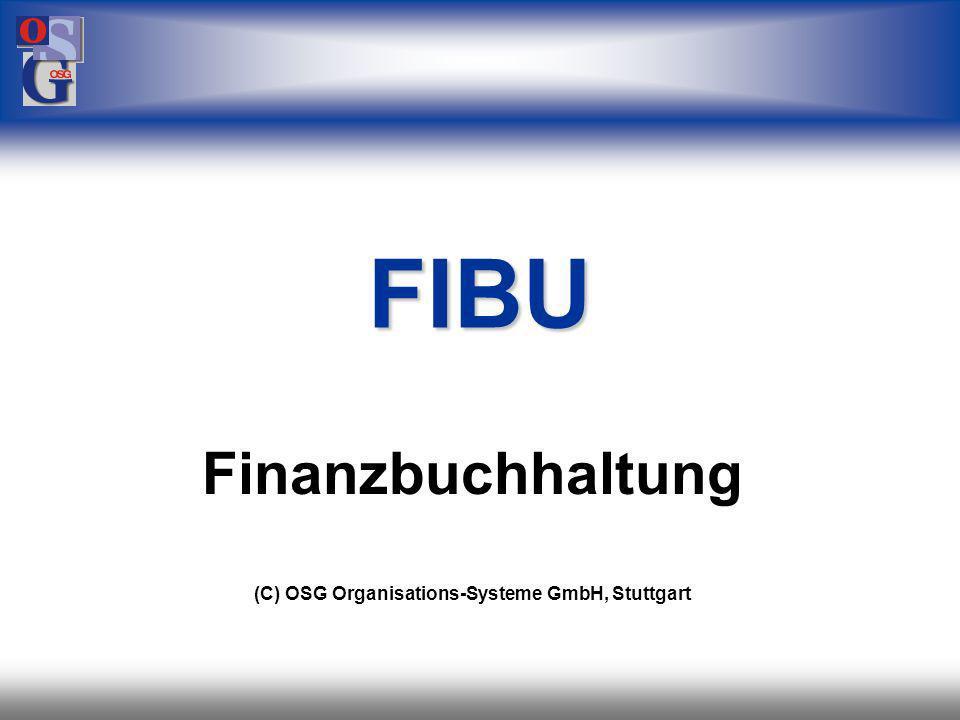 Finanzbuchhaltung (C) OSG Organisations-Systeme GmbH, Stuttgart
